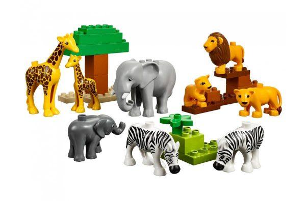 set-animales-salvajes (1)