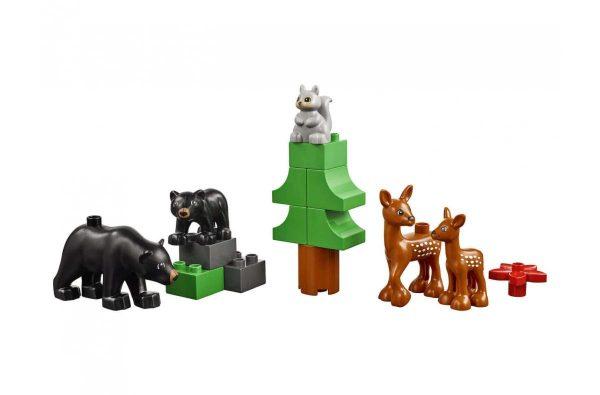 animales (2)