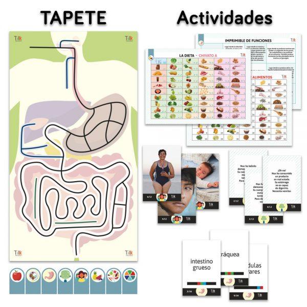 aparato-digestivo-tapete-y-actividades-pack-simple