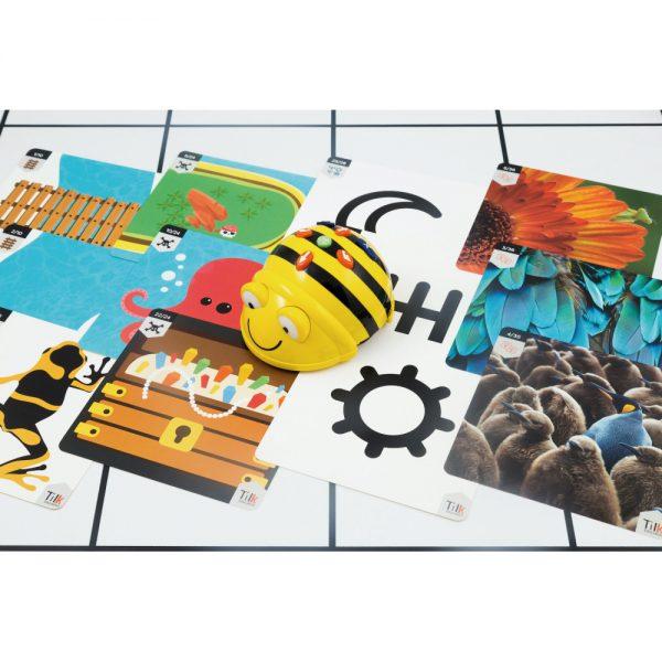 primaria-blanco-tapete-y-actividades (2)